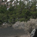 Event Venues in Flagstaff, Arizona