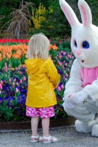 Easter Bunny Pictures - A Photo lasts a life time.