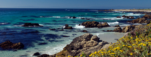 Event venues in monterey california for Best beach in monterey ca
